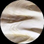 Joghurt-Honig